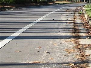 Road debris - picture from humantransport.org