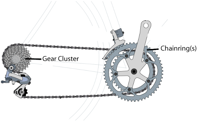 Are Some Chain Ring Gear Teeth Smaller